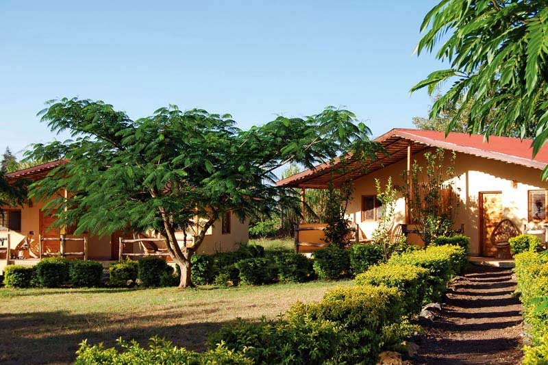 Meru_View_Lodge_07.jpg